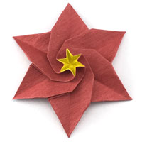 origami poinsettia flower
