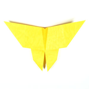 traditional origami butterfly